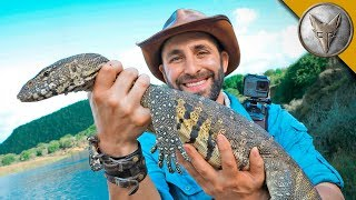 Download How to Catch a River Dragon! Video