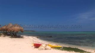 Download 30 Minute HD Caribean Beach Video Ambient Relaxation Video