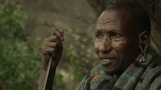 Download The life of an Il Torobo hunter-gatherer Video