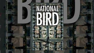 Download National Bird Video