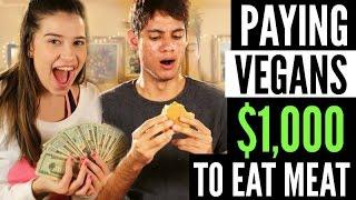 Download PAYING VEGANS $1000 TO EAT MEAT! Video