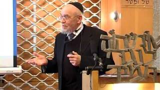 Download Rabbi Tendler Lecture 2011 Video