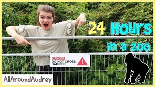 Download 24 Hours In A ZOO / AllAroundAudrey Video