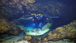 Download Cave Diving at Cow Springs, January 25, 2016 Video