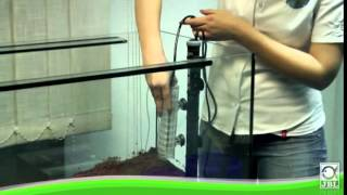 Download Installation d'un aquarium d'eau douce avec les articles JBL Video