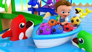 Download Colors for Children to Learning with Baby Fun Play with Color Balls Dolphin Slider Toy Set Kids Edu Video