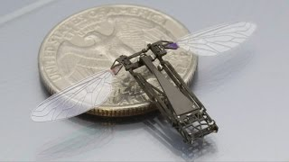 Download TOP 10 Amazing Micro-Robots Video