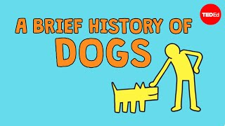 Download A brief history of dogs - David Ian Howe Video