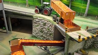 Download RC TRACTORS at apple harvest - rc toys in action Video