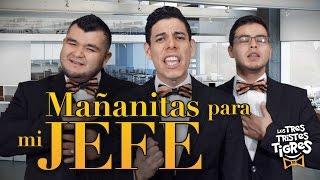 Download Los Tres Tristes Tigres - Mañanitas para mi Jefe Video