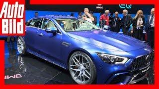 Download Mercedes-AMG GT4 (Genf 2018) Sitzprobe/Details/Erklärung Video