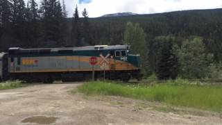 Download Great Horns!!! Via Rail No. 5 (Skeena) & No. 1 (Canadian) near Jasper, Alberta. Video