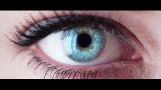Download PHI: The Evolution of Consciousness (ORIGINAL CONCEPT TRAILER) Video