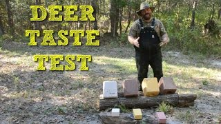 Download What do Deer Eat? Deer Salt Block Taste Test! Video