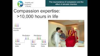 Download Antoine Lutz - The Neuroscience of Compassion - Empathy and Compassion in Society 2013 Video