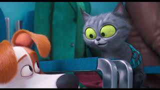 Download The Secret Life of Pets - Trailer 1 Video