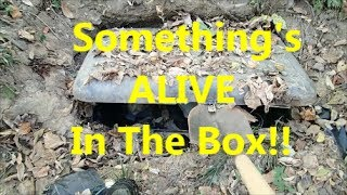 Download Creepy Homeless Camp With a Buried Box. Video