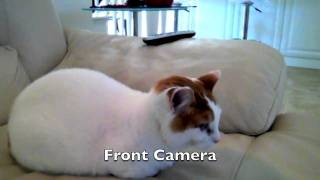Download iPad 2 Camera Test Video