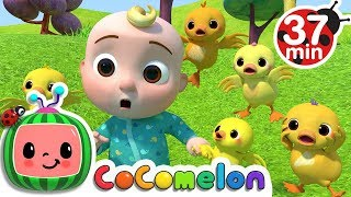 Download Five Little Ducks 2 | +More Nursery Rhymes & Kids Songs - CoCoMelon Video