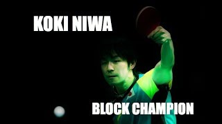 Download Koki Niwa - Block Champion Video