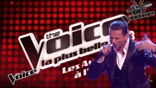 Download Depeche Mode VS The Voice (Heaven)....(ceci est une parodie !!!) Video