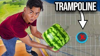 Download Dropping Watermelons vs Trampoline From 500cm ~ Bounce Video