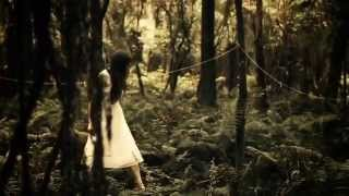 Download The Paper Kites - Bloom Video