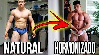 Download BULKING HORMONIZADO VS NATURAL *COMPARAÇÃO COMPLETA* Video