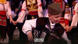 Download Harmonikas Sumadinac - Moravac - GS 2012/2013 - 03.05.2013. EM 30. Video