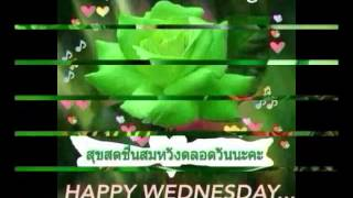 Download สวัสดีวันพุธ ″ กำลังใจ ″ Video