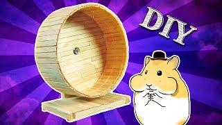 Download DIY Como fazer uma rodinha de palitos para hamster Video