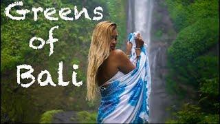 Download Greens of Bali | Panasonic Lumix G7 | 25mm f/1.7 Video