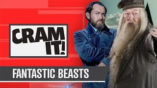 Download From Harry Potter To Fantastic Beasts CRAM IT Video