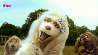 Download Just A Little Tap On The Nose - Mongrels - Series 2, Episode 1 - BBC Three Video