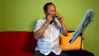 Download [동백아가씨] 문광호 / 하모니카 독주 연주 (2013.7.23) Video