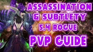 Download Evylyn - 5.4 Subtlety & Assassination Rogue Spec Rotation macros WOW MOP Patch 5.4 Rogue PVP guide Video