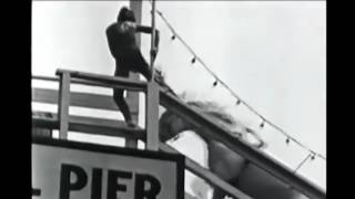 Download The Cruel Sport of Horse High Diving - Another Exploitation Of The Horse For Human Greed Video