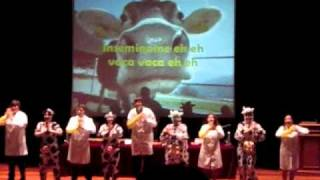 Download vaca vaca graduacion veterinaria promocion 2006/2011 Video