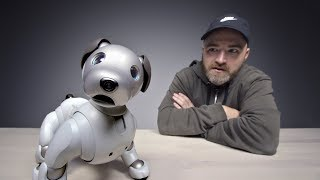 Download The $3000 Sony Aibo Robot Dog Video