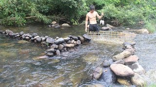 Download Primitive Technology: Build a stone dam to trap fish and cook fish in the forest of survival Video