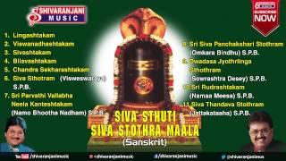 Download Siva Stuthi || Lord Shiva Devotional Songs || S.P.Balasubramanyam Songs, Mano Songs Video