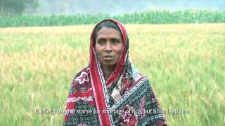 Download Crop Farmer in Bangladesh Video