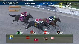 Download Gulfstream Park August 24, 2019 Race 12 Video