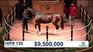 Download The November Sale (2017): SONGBIRD sells for $9.5M Video