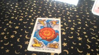 Download Learn Tarot - Major Arcana X Wheel of Fortune Video
