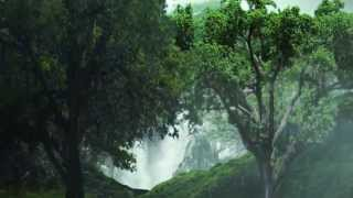 Download VFX / Visual Effects short film, 'The Enchanted Forest' by FX School student Rokib Hasan Video