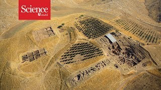 Download Evidence of a skull cult found at Neolithic stone temple Video