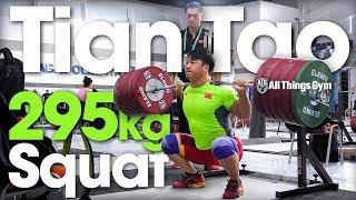 Download Tian Tao 🇨🇳 295kg / 650lbs Squat Session w/ 195kg C&J 2018 World Championships Training Hall [4k] Video