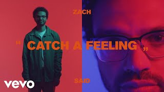 Download Zach Said - Catch a Feeling Video