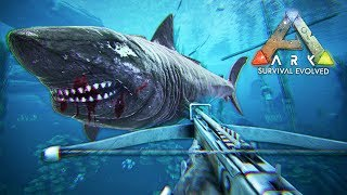 Download ARK: Survival Evolved - MEGALODON TAMING!! (ARK Ragnarok Gameplay) Video